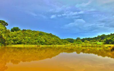 Sonhar com água barrenta